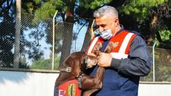 Manisa'da narkotik köpeği Volta emekli oldu