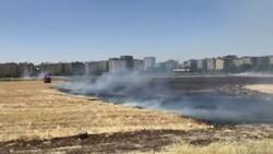 Diyarbakır'daki anız yangını kontrol altına alındı
