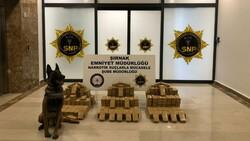 Şırnak genelinde kaçakçılık operasyonu: 68 gözaltı