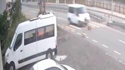 Rize'de köpeği öldüren sürücüye 966 TL ceza verildi