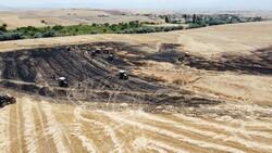Aksaray'da arpa ekili alan yandı