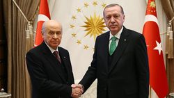 Devlet Bahçeli'den Cumhurbaşkanı Erdoğan'a yıl dönümü fidanı