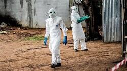 Nijerya'da kolera salgınından ölümler devam ediyor