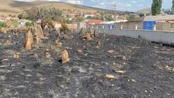 Afyonkarahisar'da köy mezarlığı yangında küle döndü