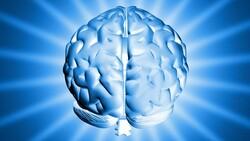 Beyni körelten günlük alışkanlıklar