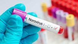 Yeni tehlike Norovirüs nedir, belirtileri nelerdir? Vakalar 3 kat arttı!