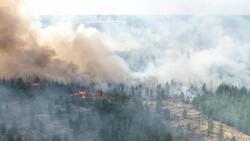 Sibirya'daki orman yangınları yerleşim yerlerine ilerliyor