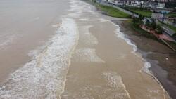 Ordu'da sel sonrası sahil çamura büründü