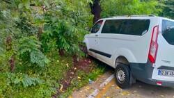 Samsun'da minibüs ağaca çarptı