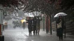 Meteoroloji'den Rize ve Artvin için yağış uyarısı
