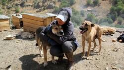 Hakkari'deki öğretmen, köpekleri için tayinden vazgeçti