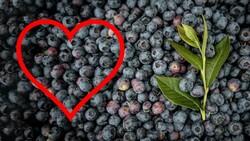 Kalp sağlığı için en iyi 10 besin