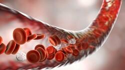K vitamini, damar tıkanıklığını önlüyor