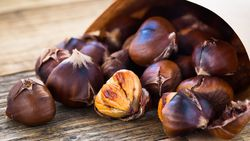 E vitamini açısından zengin 10 besin
