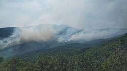 Tunceli Valiliği'nden orman yangınlarına ilişkin açıklama