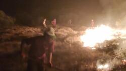 Bingöl'de çıkan orman yangını, kontrol altına alındı