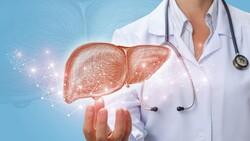 Karaciğer 1 haftada eski kapasitesine dönebiliyor