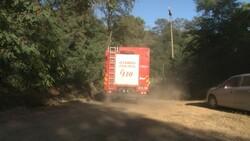 Anadolu Kavağı'nda yangın paniği