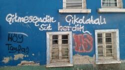 Eskişehir'de tarihi evlerin duvarları sprey boyalarla karalandı