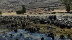 Van Gölü'nün suyu çekildi, binlerce yıllık mikrobiyalitler gün yüzüne çıktı