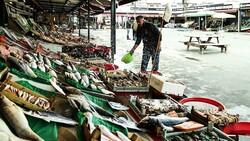 İstanbullu balıkçılar: Fiyatlar oldukça iyi