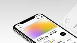 iPhone'larda  güvenlik açığı: Kredi kartları tehlikede