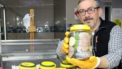 Sinop'ta palamut azalınca lakerdanın kilosu 150 liraya çıktı