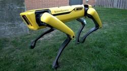 Robot köpek Spot, Çernobil'deki nükleer atıkları temizliyor