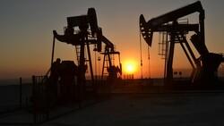 Güneydoğu'da günlük petrol üretiminde rekor kırıldı