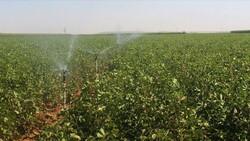 Tarım ve sulama için bütçeden 57.5 milyar lira kaynak ayrıldı