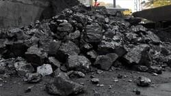 Taş kömürü satışının bu yılki geliri 229.5 milyon lira