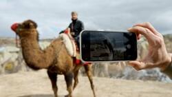 Balonlardan sonra turistler şimdi de Kapadokya'yı deve sırtında keşfediyor
