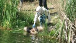Maltepe'de kayıp kadın boğazı kesilmiş halde bulundu