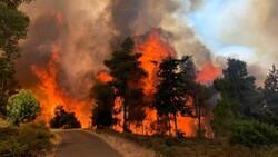 Kudüs'te yangın: 2 bin 650 dönüm arazi kül oldu
