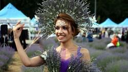 Edirne'de mor tarlalar festival alanına döndü