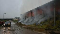 Kırklareli'de binlerce büyükbaş hayvanın bulunduğu çiftliğin yem deposu yandı
