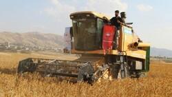 Şırnak'ta çiftçiler ilk defa aspir hasadı yaptı