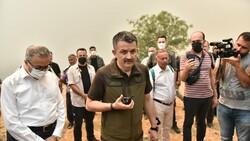 Mersin'deki orman yangınıyla ilgili 4 şüpheli gözaltına alındı