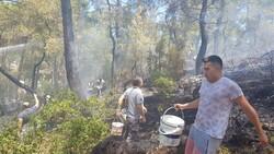 Kemer'de 3 alanda başlayan orman yangını söndürüldü