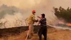 Adana'da bir itfaiye eri, su içmeyi reddedip yangına müdahaleye devam etti