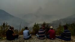 Muğla Köyceğiz'de mahalleli yangını çaresizlikle izledi