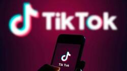 TikTok, 2020'de Facebook'u geçerek en çok indirilen uygulama oldu
