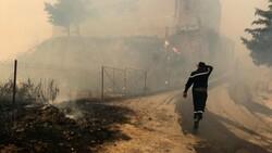 Cezayir'deki yangınlarda 42 kişi hayatını kaybetti