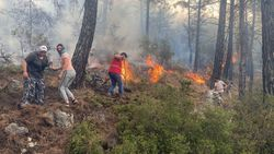 Muğla'da yangın söndürmeye ilk koşan çiftçiler oldu