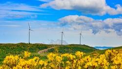 Almanya, Türkiye'den yeşil hidrojen tedarik edebilir