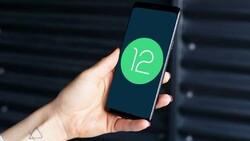 Android 12 güncellemesi alacak telefonlar! Liste ortaya çıktı