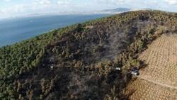 Heybeliada'daki yangın söndürüldü