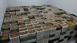TARİŞ kuru incir fiyatları 3,5 lira ile 36 lira arasında