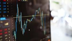 Yerli yatırımcıların hisse senedi varlıkları artıyor