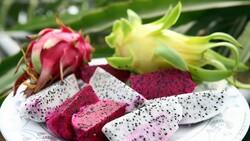Mersin'de ejder meyvesi üreticisi fiyattan memnun